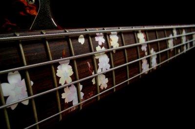 画像4: ベース用-ツリー・オブ・ライフ 桜